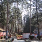 Around Binsar Mahadev Temple
